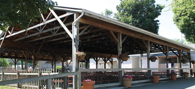 Landscape photo of an empty pavilion available for rental in the Picnic Grove.