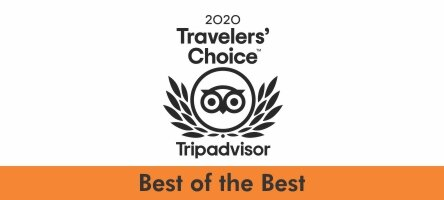 Tripadvisor logo Best of the Best